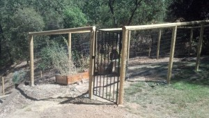 Pet Fence & Gate